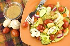 Garden Salad With Italian Dressing Royalty Free Stock Photo