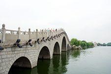 Free Bridge Stock Images - 8309744