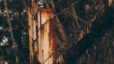 Free Barbed Wire On Wooden Post Stock Image - 83008161