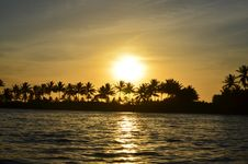 Free Sunset Behind Palm Trees Royalty Free Stock Image - 83008376