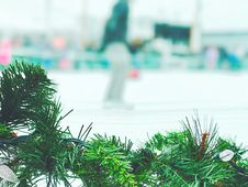 Free Christmas Garland In Ice Rink Stock Photo - 83008780