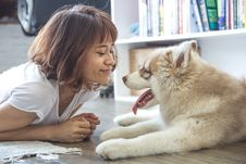 Free Young Woman Playing With Husky Dog Royalty Free Stock Image - 83009936