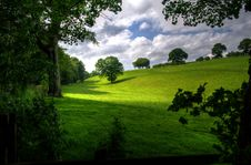 Free Green Hill With Tree Under White Clouds And Blue Sky During Daytime Stock Image - 83011211