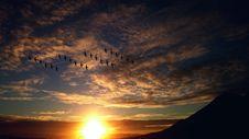 Free 4 Rosw Of Birds Flying Stock Photos - 83011783