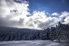 Free Cloudscape Over Forest In Winter Stock Photos - 83012153