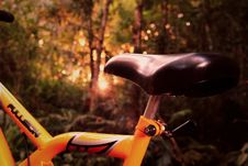 Free Closeup Of Saddle On A Mountain Bike Stock Images - 83012484