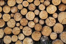 Free Pile Of Brown Tree Logs Stock Photo - 83012640
