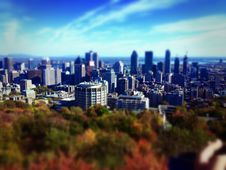 Free Skyline Of City Over Fall Foliage Royalty Free Stock Photo - 83014035