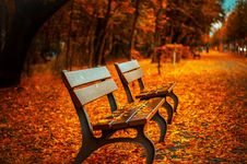 Free Park Benches In Autumn Royalty Free Stock Photo - 83014165