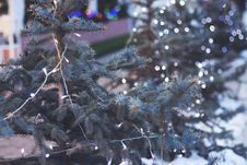 Free White Lighted Christmas Light On Christmas Tree Royalty Free Stock Photography - 83014397