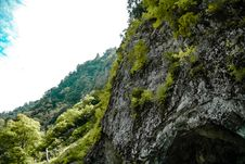 Free Low Angle Photography Of Gray Mountain Side Covered With Green Leaves Under White Sky At Daytime Stock Image - 83014781