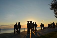 Free Silhouette Of People Near Seashore During Sunset Stock Image - 83015371