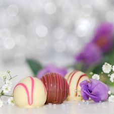 Free White And Chocolate Sweets With Purple Petal Flower Photo Stock Photos - 83015443