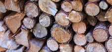 Free Pile Of Logs Royalty Free Stock Photo - 83015875