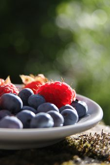 Free Red And Purple Berries On Plate Royalty Free Stock Photography - 83016517