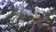 Free Young Man Looking Up In Forest Royalty Free Stock Image - 83016566