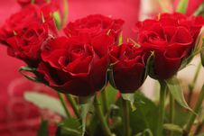 Free Bouquet Of Red Roses Royalty Free Stock Photos - 83017288
