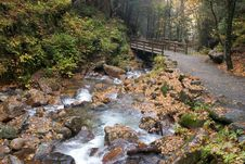 Free Bridge Over Forest Stream Stock Images - 83017734