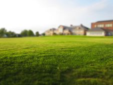 Free Green Lawn Outside Home Royalty Free Stock Image - 83018146