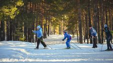 Free 4 Man Snow Skiing In The Woods Stock Photography - 83018402