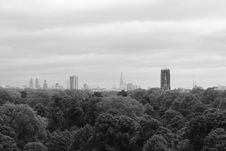 Free Pine Tress And High Building In Grayscale Photo Royalty Free Stock Photography - 83018837