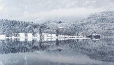 Free Snow Covered Trees Reflecting In Water Stock Photos - 83018873