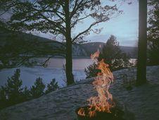 Free Bonfire On Grey Sand Near Trees Stock Photography - 83019602
