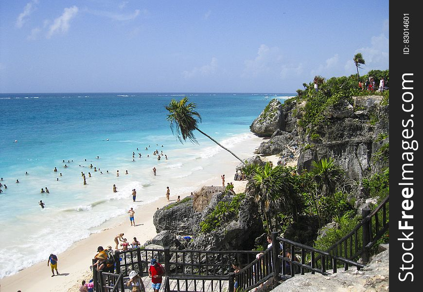 People on Cliff With Grass Trees Watching People on Sea Shore Swimming Walking Under Blue Clouds during Daytime
