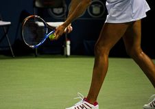 Free Tennis Player On Court Stock Image - 83035461