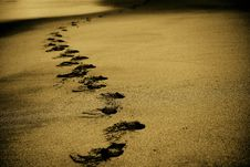 Free Footprints In Sand Royalty Free Stock Photo - 83036005