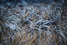 Free Carpet With Fringe Stock Photo - 83036640