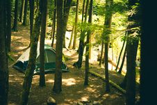 Free Tent In Forest Royalty Free Stock Image - 83036776