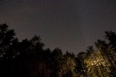 Free Night Sky In Forest Stock Photography - 83036842