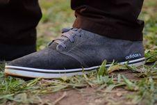Free Gray White Adidas Sneaker Stock Image - 83037321