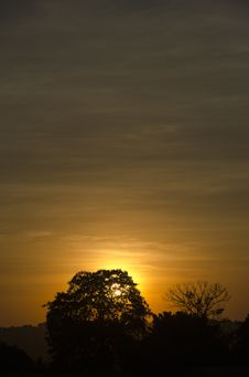 Free Silhouette Of Trees Against Orange Sun During Sunsset Royalty Free Stock Image - 83037646