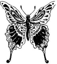 Free Papillon-004 Royalty Free Stock Photography - 83039047