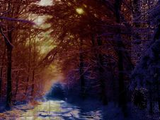 Free Winter Background 3 Stock Photos - 83040963