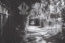 Free Bike Lane And Crosswalk Royalty Free Stock Photography - 83055127