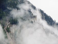 Free Green Trees On Mountain Covered With Fog Royalty Free Stock Photography - 83059267