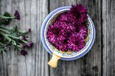 Free Purple Flowers In Blue Brown And Blue Ceramic Bowl Royalty Free Stock Image - 83059356