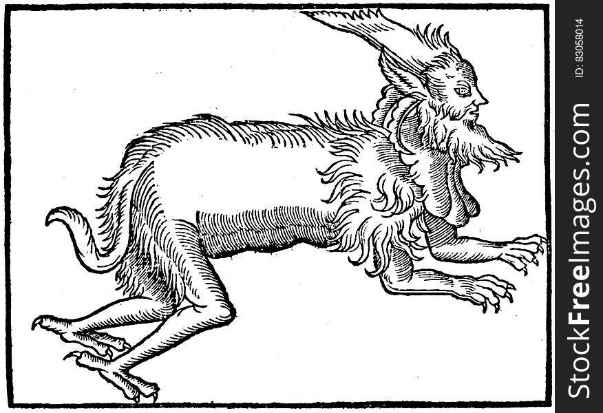 Creature in black and white