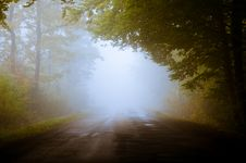 Free Fog On Country Road Royalty Free Stock Photo - 83060535