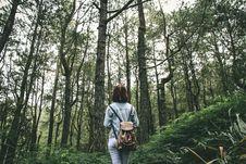 Free Woman In Grey Denim Jacket Walking Around Green Tree During Daytime Stock Photography - 83061302