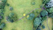 Free Top View Of Green Trees And Green Grass Field Royalty Free Stock Image - 83061326