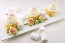 Free Frosted Marshmallow Cupcakes Stock Photo - 83061650