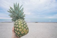 Free Pineapple On Beach Royalty Free Stock Photos - 83061748