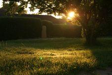 Free Sunset Over Grassy Backyard Stock Image - 83062011