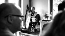 Free Woman Playing Harp On Stage Grayscale Stock Images - 83062244