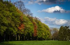 Free Green And Red Tress Under Blue Sky And White Clouds During Daytime Stock Photography - 83062492