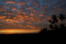 Free Coconut Trees Under Light And Dark Sky During Sunset Royalty Free Stock Image - 83063586